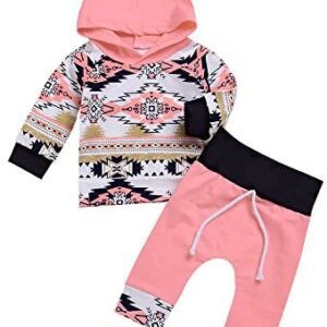 2Pcs Baby Girl Clothes Spring Fall Winter Floral Print Long Sleeve Ruffle Hoodie + Pants Outfit Set
